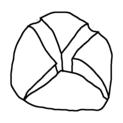 Badly Drawn Logos Xbox