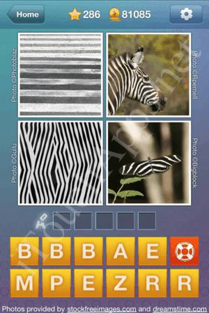What's the Word Level 286 Solution