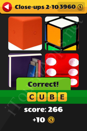 What's That Word Close-ups Level 2-10 Solution