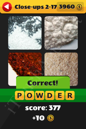 What's That Word Close-ups Level 2-17 Solution