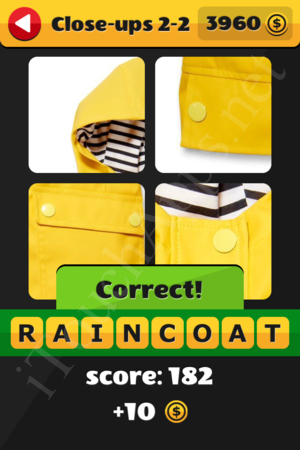 What's That Word Close-ups Level 2-2 Solution