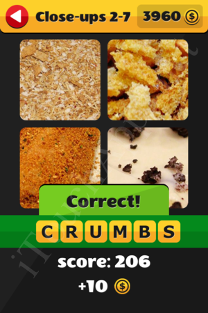What's That Word Close-ups Level 2-7 Solution