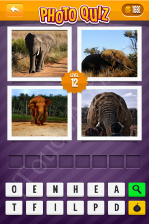 Photo Quiz Easy Pack Level 12 Solution