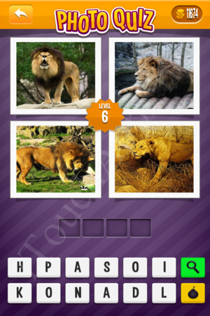 Photo Quiz Easy Pack Level 6 Solution