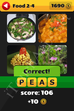 What's That Word Food and Drinks Level 2-4 Solution
