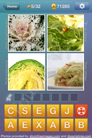 What's the Word Food and Cooking Level 5 Solution