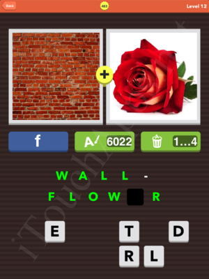 Pic Combo Level 483 Answer