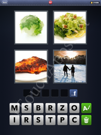 4 Pics 1 Word Level 691 Solution