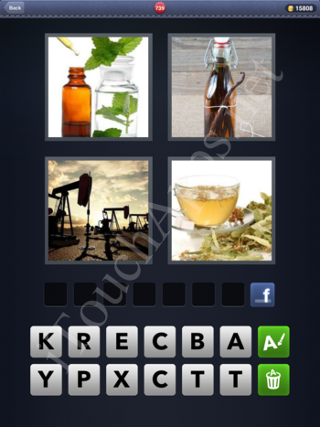 4 Pics 1 Word Level 739 Solution