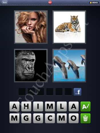 4 Pics 1 Word Level 822 Solution