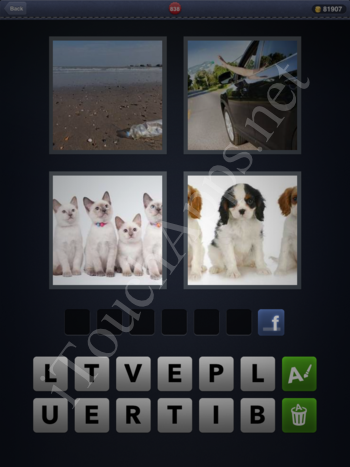 4 Pics 1 Word Level 838 Solution