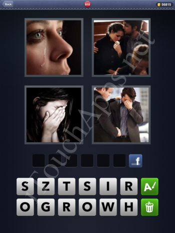 4 Pics 1 Word Level 910 Solution