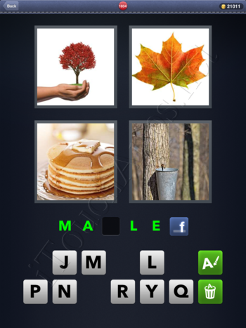 4 Pics 1 Word Level 1034 Solution