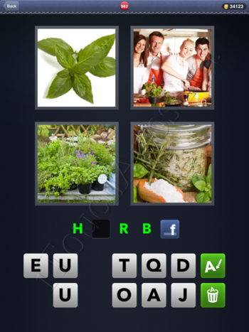 4 Pics 1 Word Level 982 Solution
