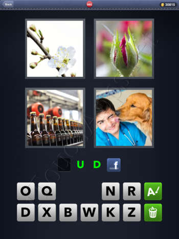4 Pics 1 Word Level 995 Solution