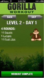 Gorilla Workout Review