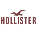 Logos Quiz Level 13 Answers HOLLISTER