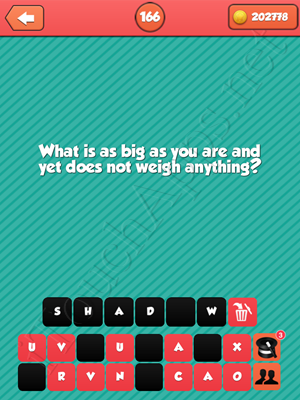 Riddle Me That Level 166 Answer