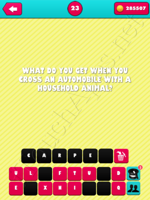 What the Riddle Level 23 Answer