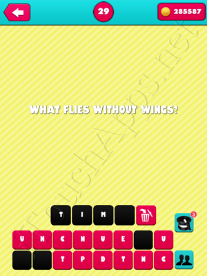 What the Riddle Level 29 Answer