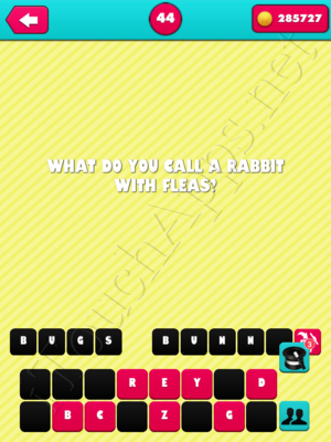 What the Riddle Level 44 Answer