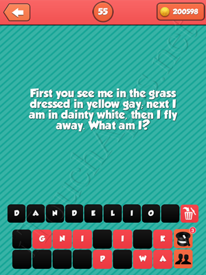 Riddle Me That Level 55 Answer
