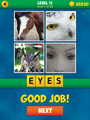4 Pics 1 Word Puzzle - More Words - Level 11 Word 1 Solution