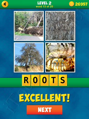 4 Pics 1 Word Puzzle - More Words - Level 2 Word 13 Solution