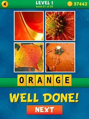 4 Pics 1 Word Puzzle - What's That Word Level 1 Word 21 Solution