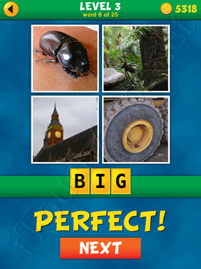 4 Pics 1 Word Puzzle - What's That Word Level 3 Word 6 Solution