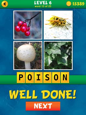 4 Pics 1 Word Puzzle - What's That Word Level 6 Word 13 Solution
