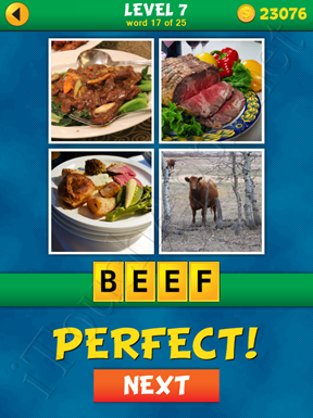 4 Pics 1 Word Puzzle - What's That Word Level 7 Word 17 Solution