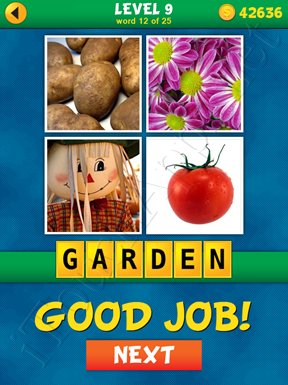 4 Pics 1 Word Puzzle - What's That Word Level 9 Word 12 Solution