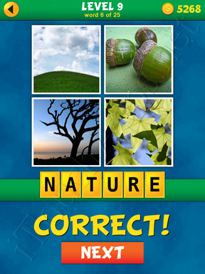 4 Pics 1 Word Puzzle - What's That Word Level 9 Word 6 Solution