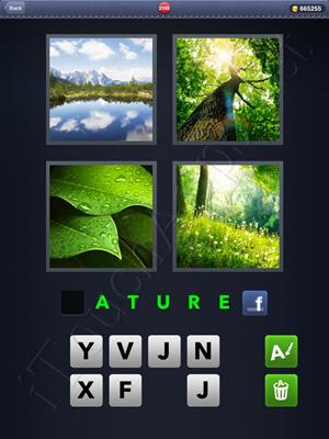 4 Pics 1 Word Level 2100 Solution