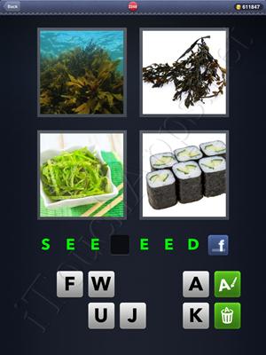 4 Pics 1 Word Level 2248 Solution