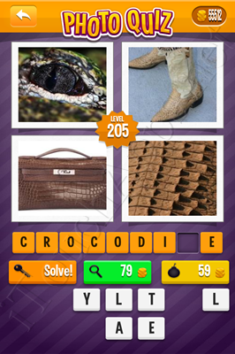 Photo Quiz Arcade Pack Level 205 Solution