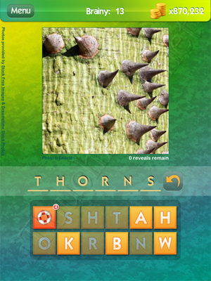 What's the Pic Brainy Level 13 Solution