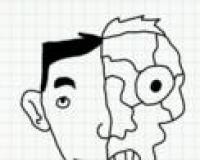 Badly Drawn Faces Answers: Shrimp Pad