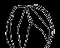 Badly Drawn Logos Answers: Tveir Pad