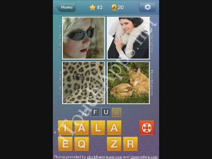 What's the Word Level 10 Solution