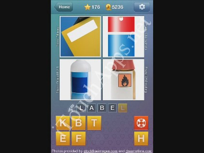 What's the Word Level 176 Solution