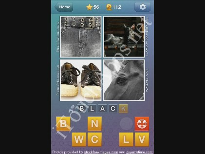 What's the Word Level 56 Solution