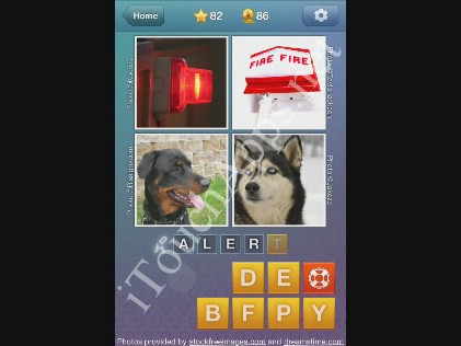 What's the Word Level 82 Solution
