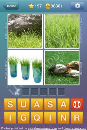 What's the Word Level 197 Solution
