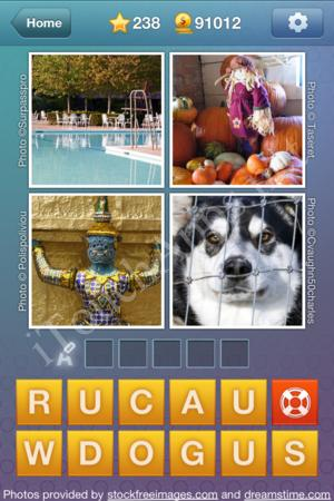 What's the Word Level 238 Solution