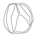 Badly Drawn Logos Acura