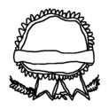 Badly Drawn Logos Pabst Blue Ribbon