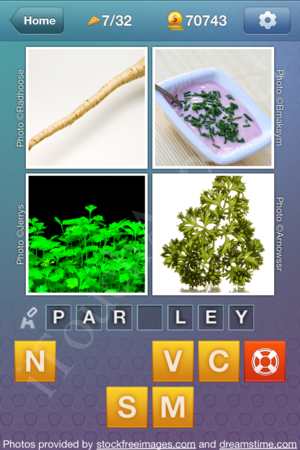 What's the Word Food and Cooking Level 7 Solution