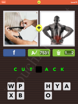 Pic Combo Level 307 Answer